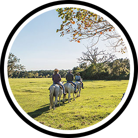 Three riders on horseback at Blisswood Bed and Breakfast Ranch