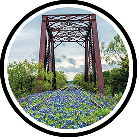 Bluebonnets on an old railroad bridge near Kingsland.