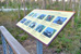 Close-up view of an interpretive display of types of native birds